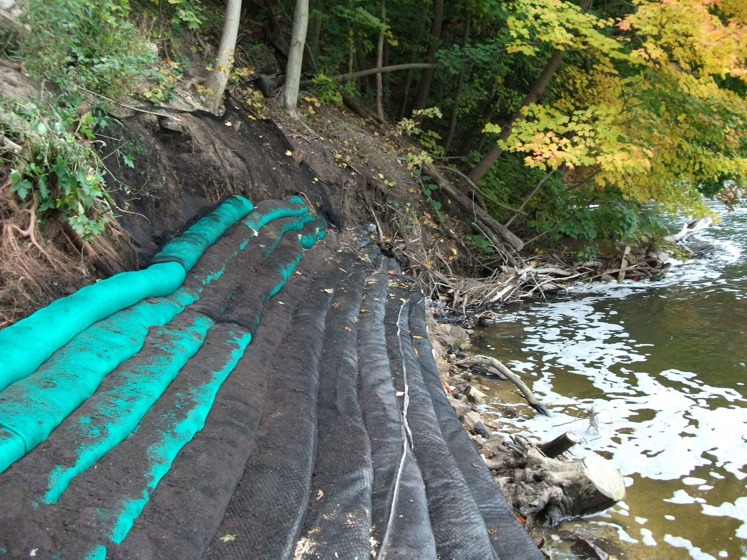 Allegan Dam Shoreline Restoration
