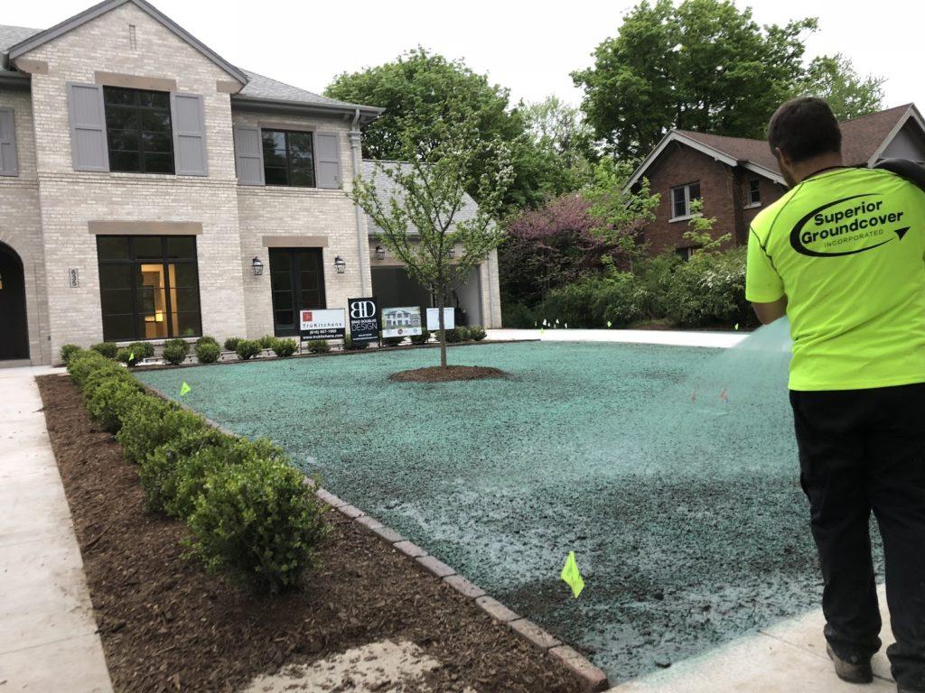 Hydroseeding a front lawn